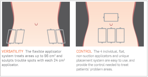 SculpSure Cost By Treatment Area